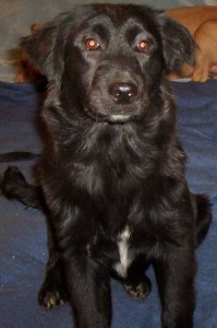 Sabrina-6-month